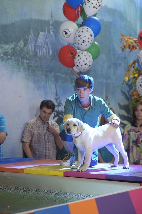 """Bodi Grogan (Travis Turner) kämpft sich bei einem Hundewettbewerb mit seinem Hund """"Marley"""" durch alle Disziplinen. Bis jetzt kann Marley alle Aufgab... - Bildquelle: 2011 Twentieth Century Fox Film Corporation. All rights reserved."""