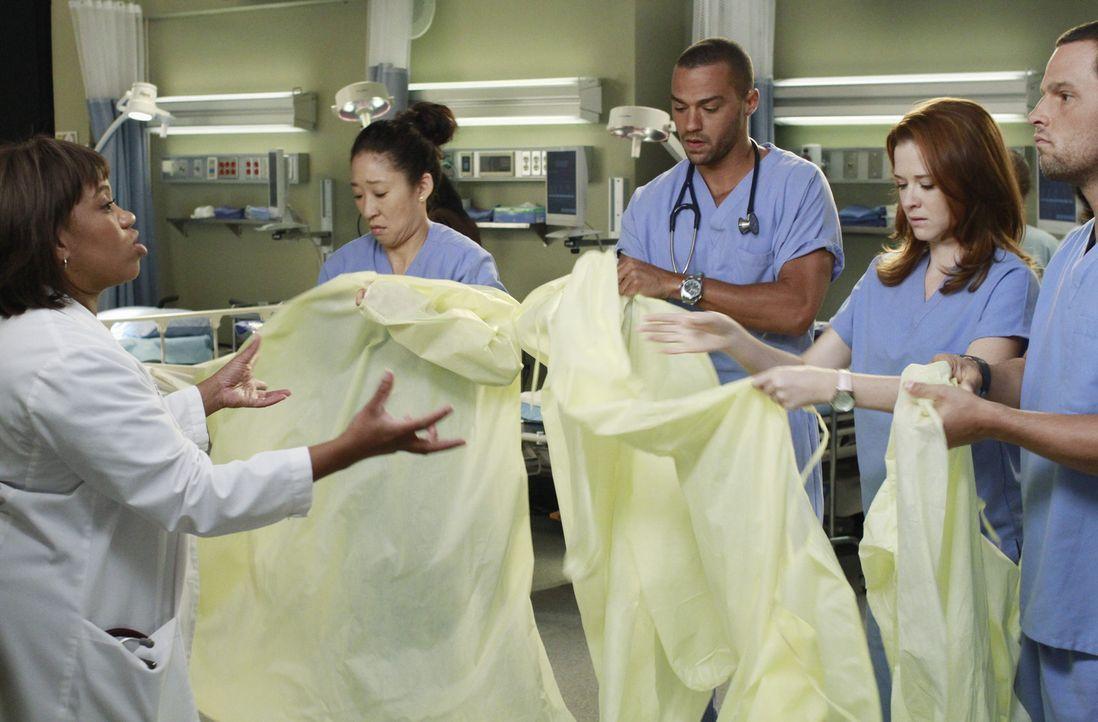 Bailey (Chandra Wilson, l.) hat eine ganz besondere Aufgabe für Jackson (Jesse Williams, M.), April (Sarah Drew, 2.v.r.), Alex (Justin Chambers, r.... - Bildquelle: ABC Studios