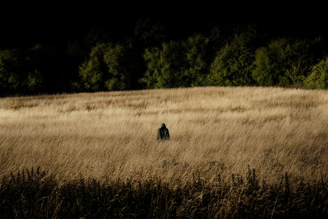Stereo-07-Wild-Bunch - Bildquelle: Stephan Rabold / Frisbee Films