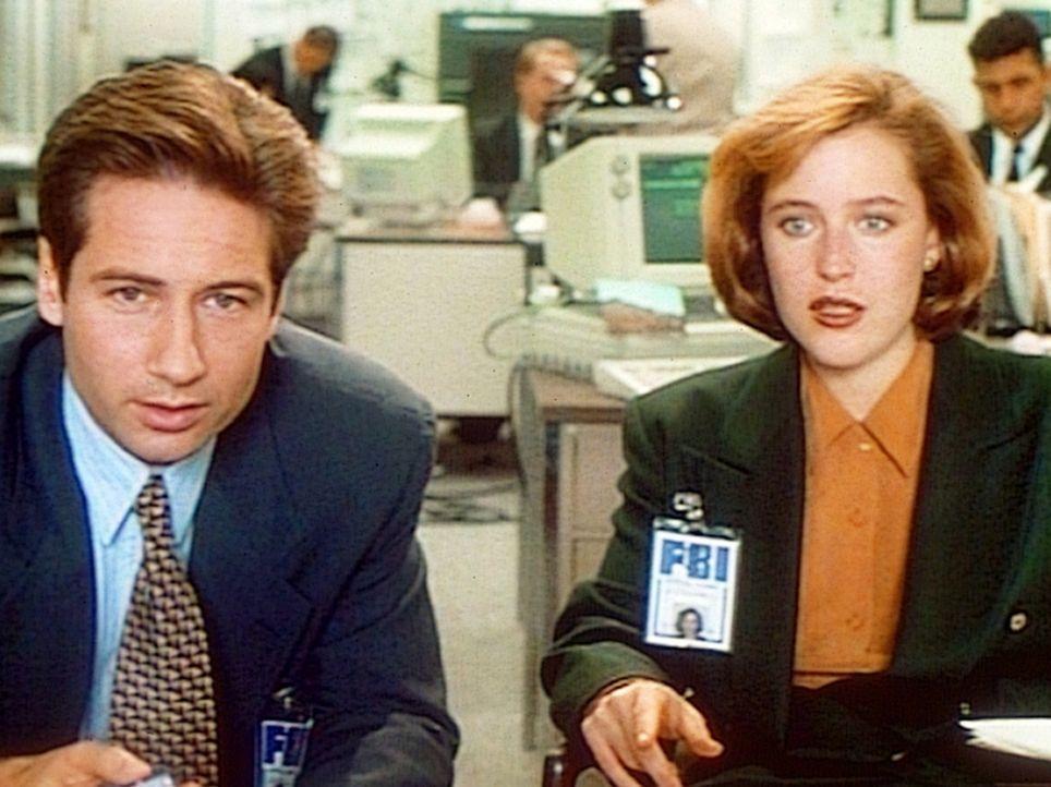 Fox Mulder (David Duchovny, l.) und Dana Scully (Gillian Anderson, r.) suchen nach einer Erklärung für mysteriöse Todesfälle. - Bildquelle: TM +   Twentieth Century Fox Film Corporation. All Rights Reserved.