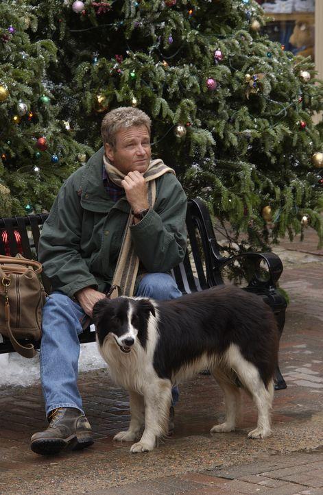 Manchmal ist ein Wunder nötig, um nach Hause zu kommen - oder auch zwei: Hank McCallister (William Russ) ... - Bildquelle: CBS International Television