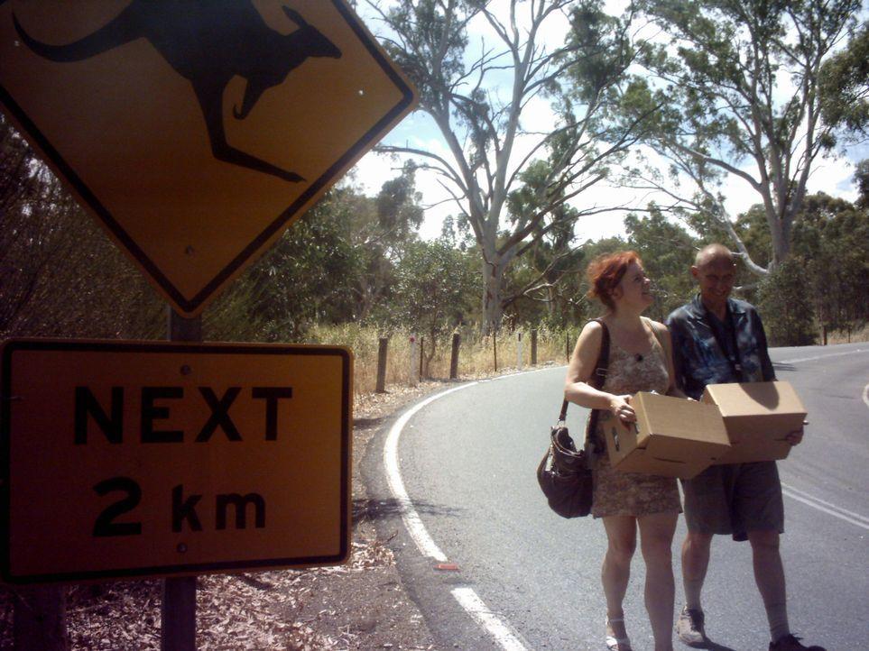 Empfangssekretärin Monika Neie (51) geht allein nach Australien. Sie will dort ihr Leben mit einem Mann zu verbringen, den sie erst einmal gesehen h... - Bildquelle: kabel eins