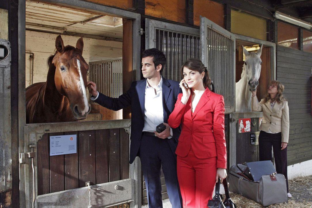 Während David (Mathis Künzler, l.) und Mariella (Bianca Hein, M.) den Stall von dem Rennpferd Bluestar besichtigen, fühlt sich Lisa (Alexandra Ne... - Bildquelle: Sat.1