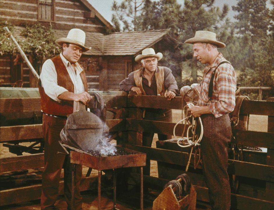 Waldo (George Kennedy, r.) ist des Lebens überdrüssig, aber Hoss (Dan Blocker, l.) und Ben (Lorne Greene, M.) versuchen ihn auf der Ponderosa aufzum... - Bildquelle: Paramount Pictures