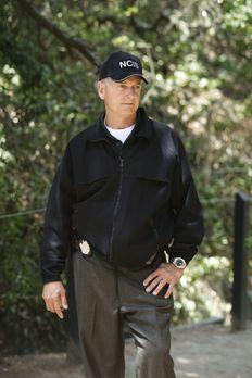 Ein neuer Fall beschäftigt Gibbs (Mark Harmon) und sein Team ... - Bildquelle...
