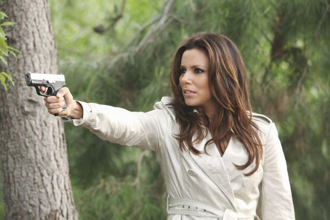Während Bree beschließt, Chuck bei dessen Scheidung zu helfen, hat Gabrielle (Eva Longoria) ganz andere Pläne ... - Bildquelle: ABC Studios