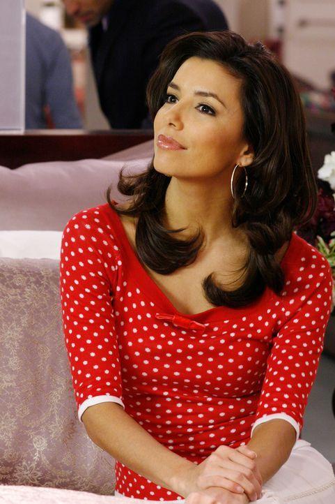 Findet Gefallen an Luke, Zachs Anwalt: Gabrielle (Eva Longoria) ... - Bildquelle: 2005 Touchstone Television  All Rights Reserved