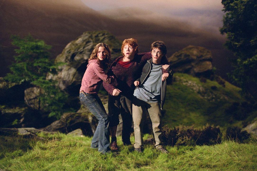 Harry Potter (Daniel Radcliffe, r.), Ron (Rupert Grint, M.) und Hermine (Emma Watson, l.) versuchen mit dem Mut der Verzweifelung, das Böse zu besie... - Bildquelle: Warner Television