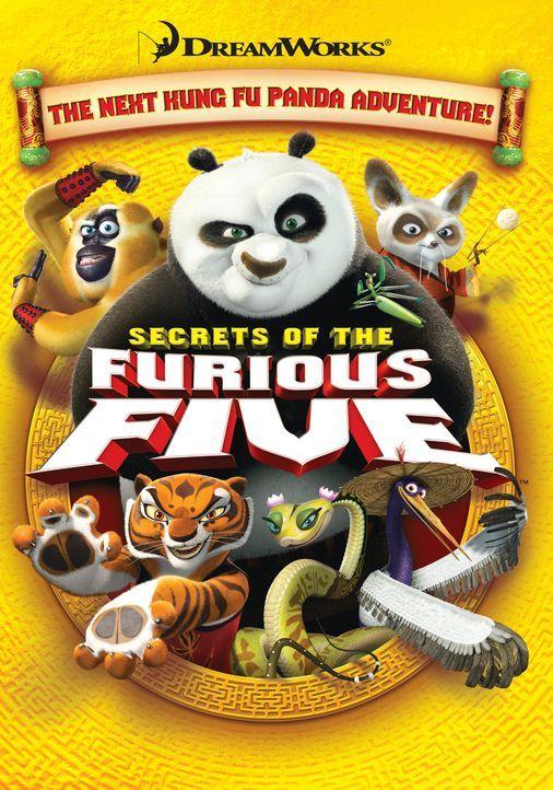 Kung Fu Panda Po hat es geschafft: Er hat den bösartigen Schneeleoparden Tai Lung besiegt, doch nun muss er sich seiner größten Herausforderung s... - Bildquelle: 2008 DREAMWORKS ANIMATION LLC. ALL RIGHTS RESERVED.
