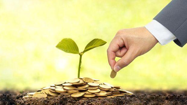 Mann pflanzt Münze ein