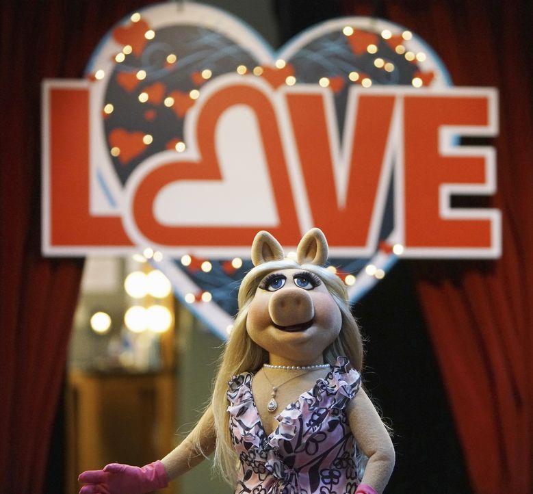 Nach alldem, was im Krankenhaus vorgefallen ist, überdenken Miss Piggy (Bild) und Kermit ihre Beziehung noch einmal. Werden sie wieder zusammenfinde... - Bildquelle: Andrea McCallin ABC Studios
