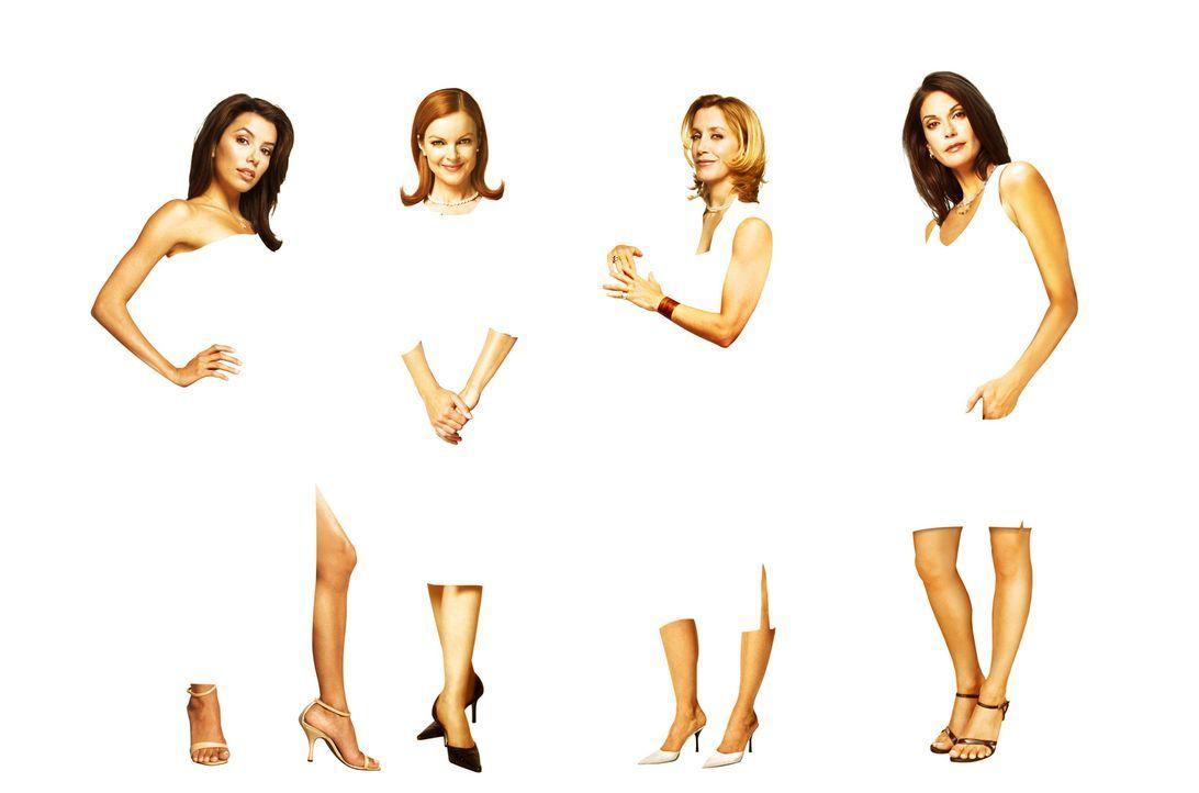 (1. Staffel) - Gelangweilte Hausfrauen machen sich ihr Leben gegenseitig zur Hölle: Lynette Scavo (Felicity Huffman, 2.v.r.), Bree Van De Kamp (Marc... - Bildquelle: Touchstone Pictures