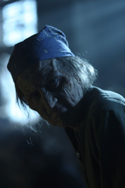 Die Freunde machen sich auf die Suche nach Donna (Amy Aquino), um Sally zu retten. Doch wird es ihnen gelingen? - Bildquelle: Phillipe Bosse 2013 B.H. 2 Productions (Muse) Inc. ALL RIGHTS RESERVED.