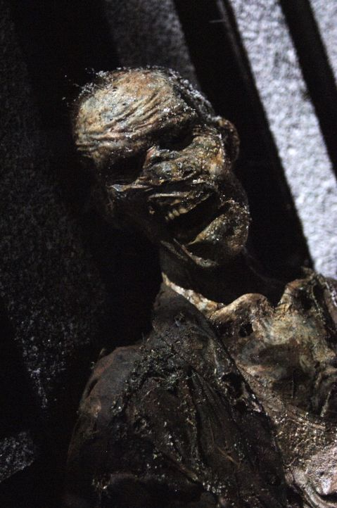 Wird der mordende Geist verschwinden, wenn Dean und Sam die Leiche das vor 40 Jahren versenkten Cyrus verbrannt wird? - Bildquelle: Warner Bros. Television