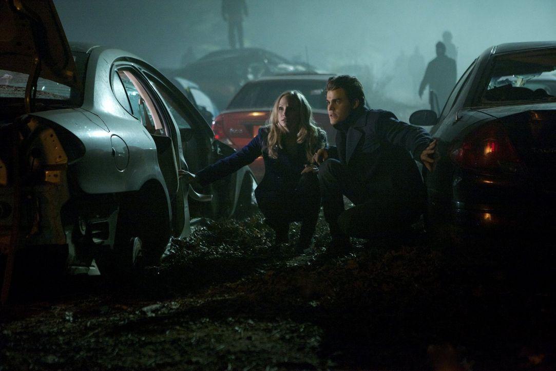 Im Camp der Traveller machen Caroline (Candice Accola, l.) und Stefan (Paul Wesley, r.) eine erschreckende Beobachtung ... - Bildquelle: Warner Brothers