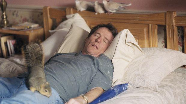 Vater Hal (Bryan Cranston) gönnt sich ein Nickerchen ... © TM +   2000 Twenti...