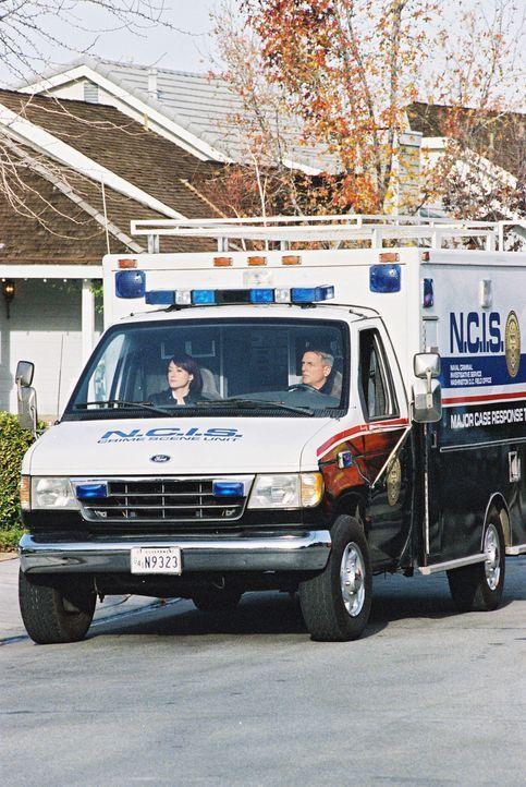 Versuchen den Mörder von Lieutnat Commander Egan zu finden: Gibbs (Mark Harmon, r.) und Kate (Sasha Alexander, l.) ... - Bildquelle: CBS Television
