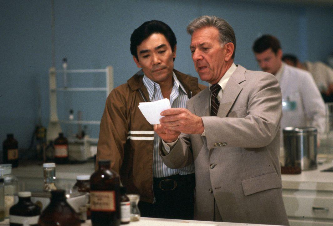 Quincy (Jack Klugman, r.) und Sam (Robert Ito, l.) stehen vor einem Rätsel. Sie haben zwei Blutproben vorliegen - angeblich von derselben Leiche - a... - Bildquelle: Universal Pictures