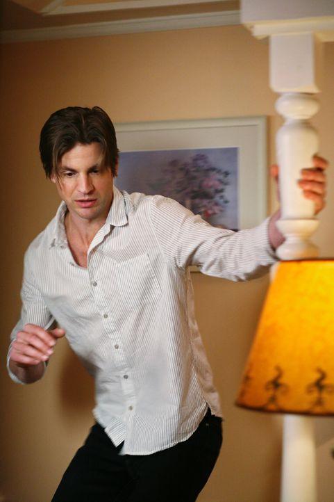 Während Lynette beim Sex mit Tom vor Erschöpfung einschläft, bekommt Susan überraschend Besuch von Jackson (Gale Harold) ... - Bildquelle: ABC Studios