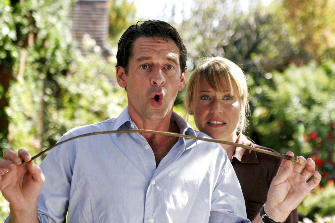 Christoph (Max Tidof, l.) und Simone (Anica Dobra, r.) erleben mit Theresa und Albert so einige Katastrophen. - Bildquelle: Boris Guderjahn Sat.1