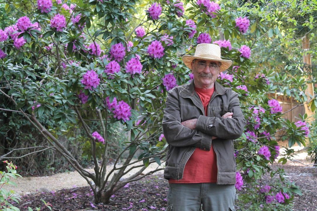 Dank seines Talentes und den gesammelten Erfahrungen schafft er jedes Baumhaus in ein traumhaftes Zuhause zu verwandeln: Treehouse Guy Michael Garni... - Bildquelle: 2015, DIY Network/Scripps Networks, LLC. All Rights Reserved.