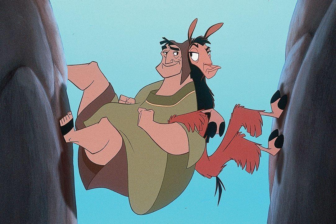 Für den Bauer Patscha (l.) und das Lama Kuzco (r.) bleibt kein Hindernis unüberwindbar ... - Bildquelle: Disney Enterprises Inc.