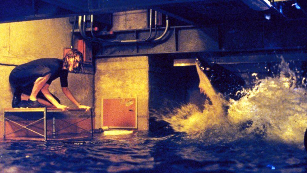 Deep Blue Sea - Bildquelle: Warner Bros. Pictures