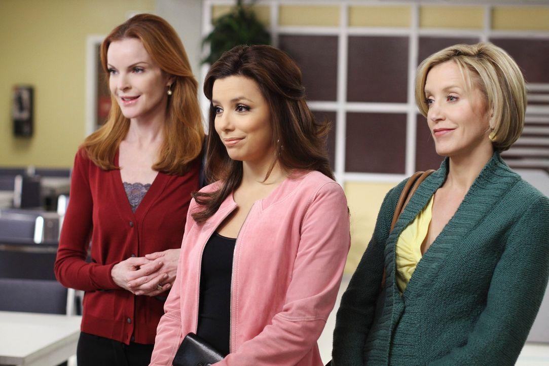 Wollen Katherine zeigen, dass sie ihr vergeben haben: Bree (Marcia Cross, l.), Gabrielle (Eva Longoria, M.) und Lynette (Felicity Huffman, r.) ... - Bildquelle: ABC Studios