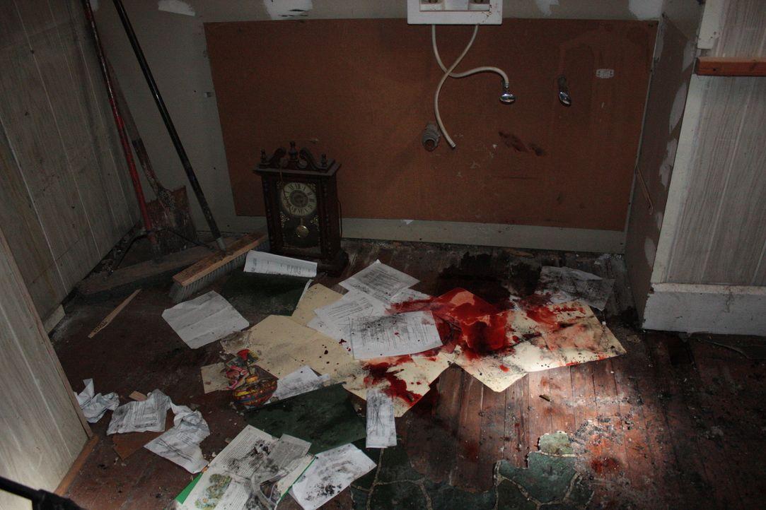 Lieutenant Joe Kenda ermittelt in einem neuen kniffligen Fall ... - Bildquelle: Jupiter Entertainment