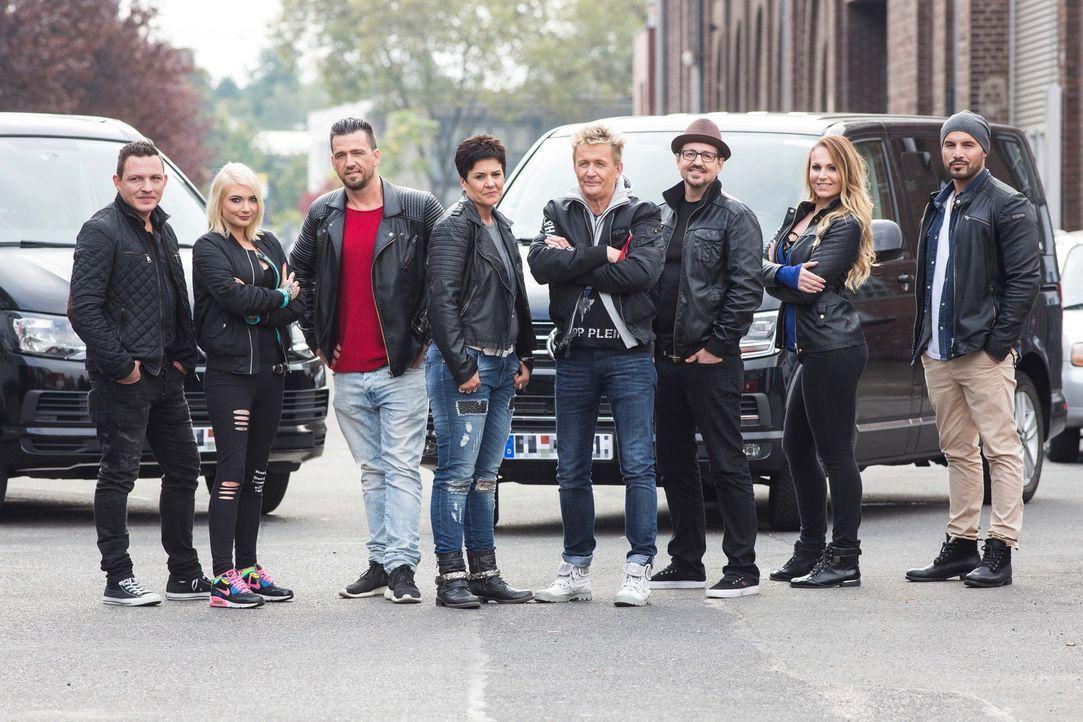 Die Detektive Miriam (4.v.l.) und Stefan Wolloscheck (4.v.r.) und deren Team kämpfen stets für das Recht ihrer Auftraggeber ...