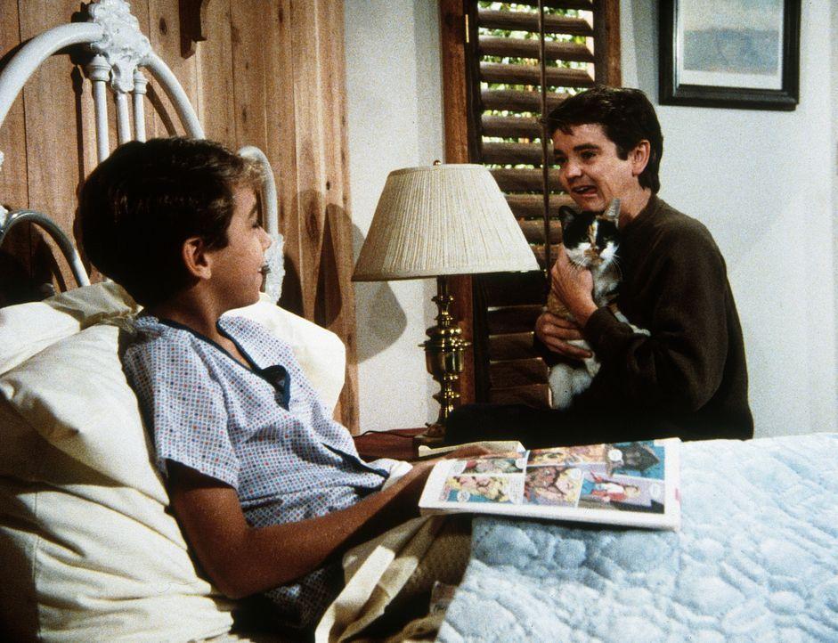 Larry (Danny McMurphy, l.) und Arnie (John Franklin, r.) werden gute Freunde. - Bildquelle: 20th Century Fox Television