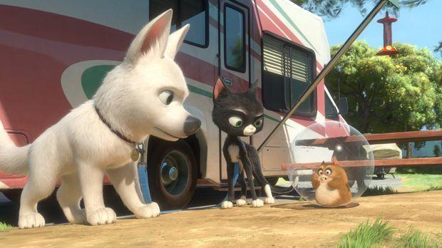 Bolt - Ein Hund für alle Fälle - Mittens (M.) und Bolt (l.) treffen auf Dino...