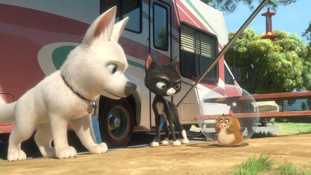 Bolt - Ein Hund für alle Fälle - Bildquelle: Disney Enterprises, Inc.  All rights reserved
