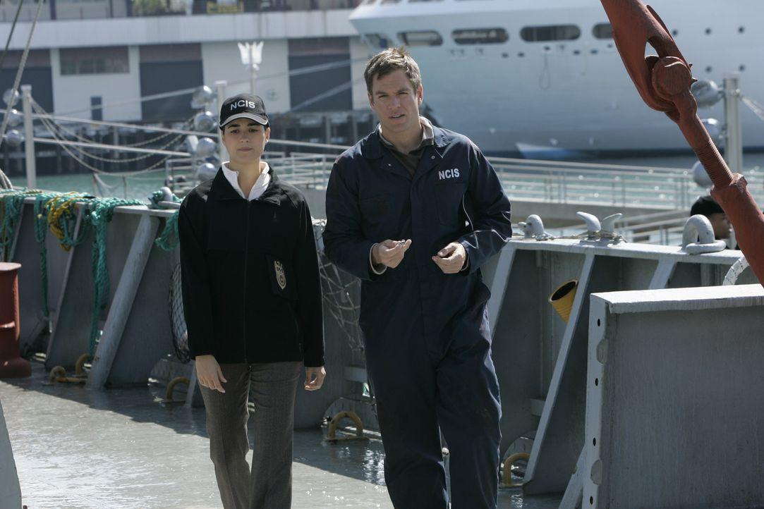 Bei einer Bombenexplosion auf einem Schiff wird Gibbs so schwer verletzt, dass er in ein tiefes Koma fällt. Tony (Michael Weatherly, r.) und Ziva (... - Bildquelle: CBS Television
