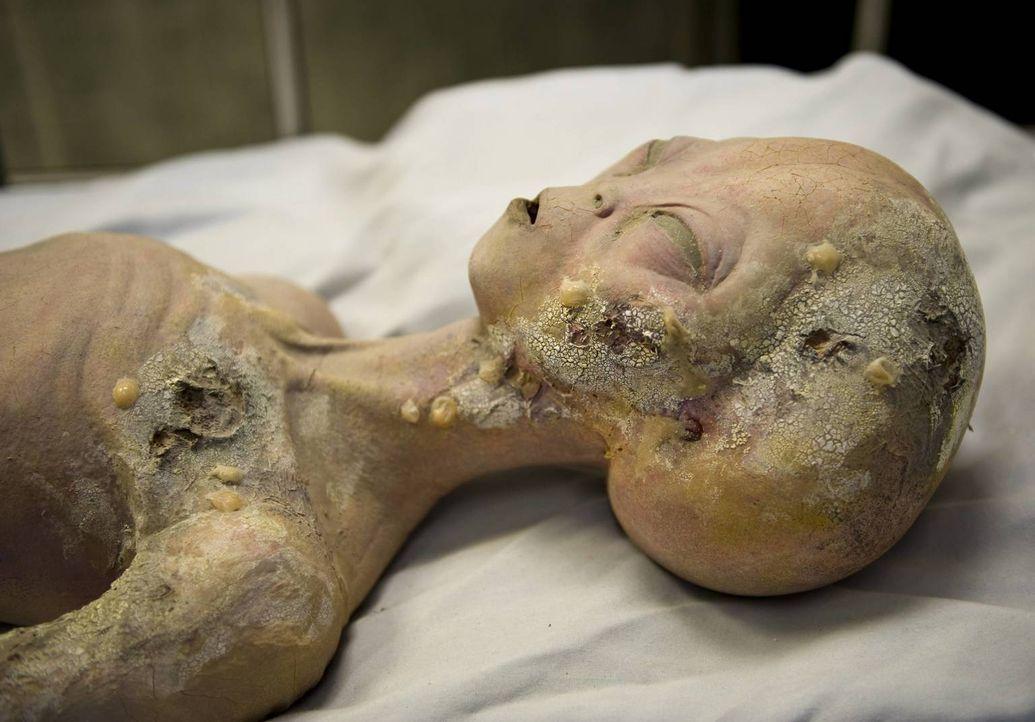 Die spektakulärsten Verschwörungstheorien - Empfangen wir Botschaften aus dem All? Was hat es mit den mysteriösen Wüsten-Zeichnungen von Nazca auf s... - Bildquelle: imago/ZUMA Press