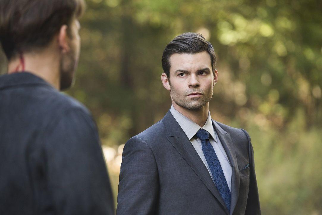 Während sich Elijah (Daniel Gillies) mit alten Feinden zusammenschließen muss, ahnt Marcel nicht, wie nahe das Böse bereits ist ... - Bildquelle: 2016 Warner Brothers