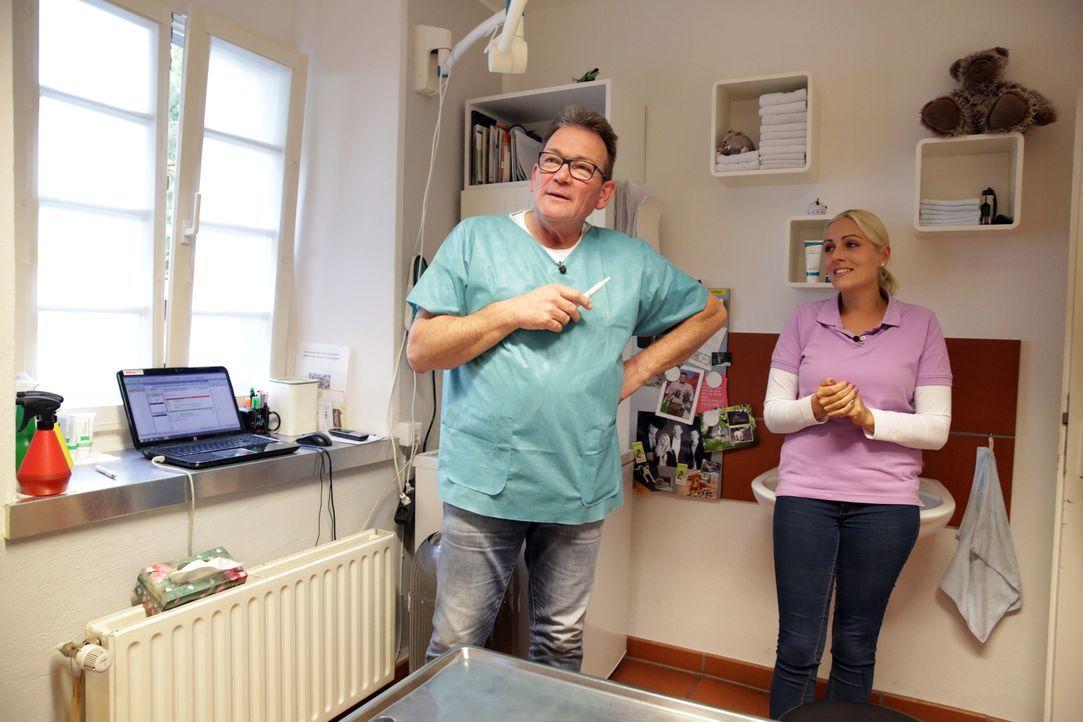 Der Nächste, bitte! Tanja (r.) und Dr. Herbert Dreesen (l.) warten auf den nächsten tierischen Patienten ... - Bildquelle: BluePrint Media GmbH 2017