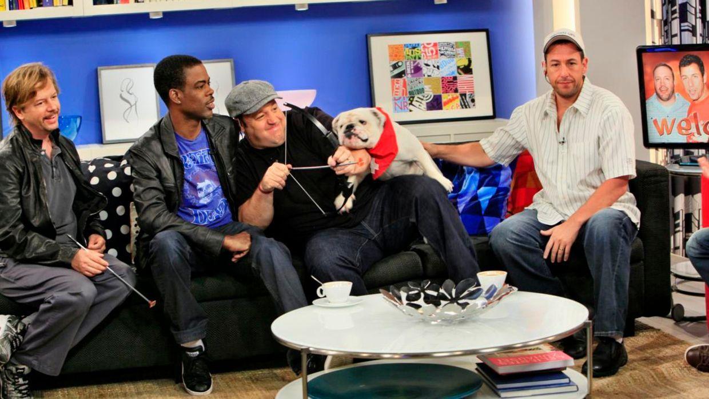 fruehstuecksfernsehen-studiohund-lotte-in-action-im-studio-071 - Bildquelle: Ingo Gauss