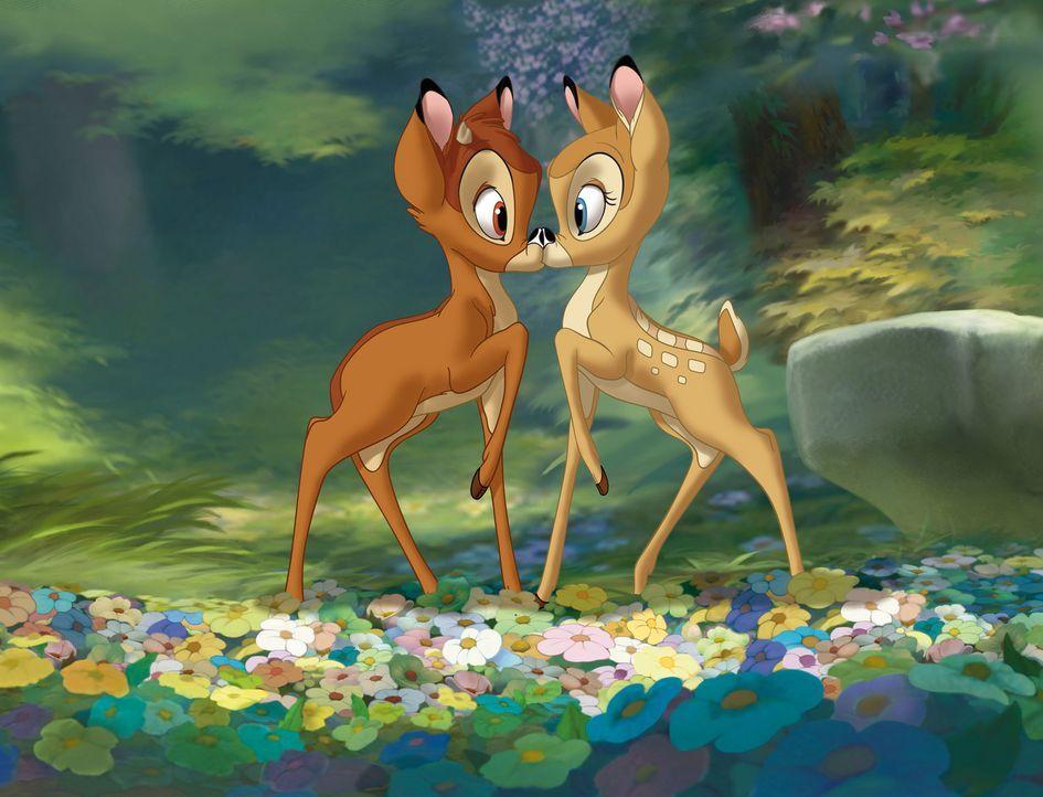 Halten stets zusammen: Bambi (l.) und seine Freundin Feline (r.) ... - Bildquelle: Disney  All rights reserved
