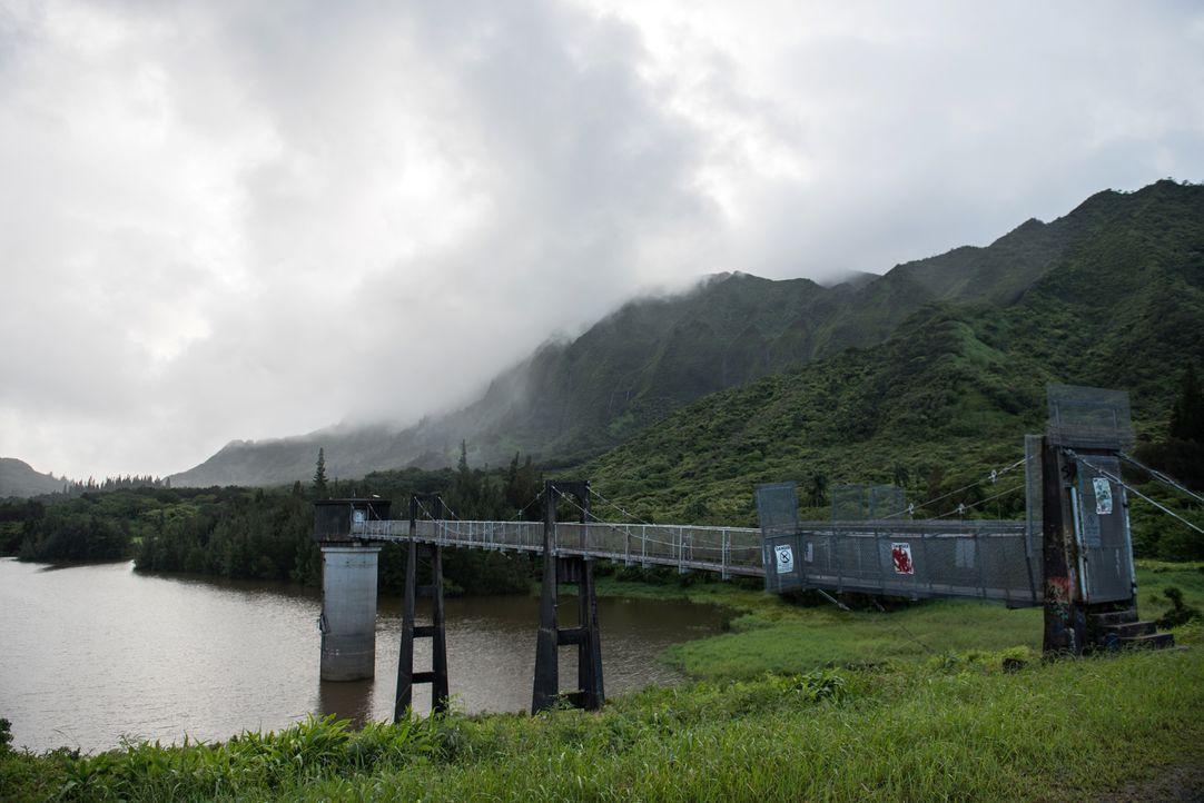 """Diese Brücke führt zu den """"Lulumahu Falls"""" in Honolulu auf Hawaii. Schon der Weg zum Badespot über diese Brücke ist beeindruckend ... - Bildquelle: 2017,The Travel Channel, L.L.C. All Rights Reserved"""