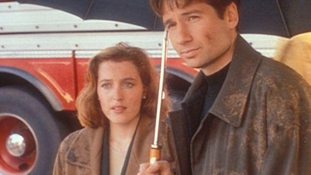 Scully (Gillian Anderson, l.) und Mulder (David Duchovny, r.) sind nach der...