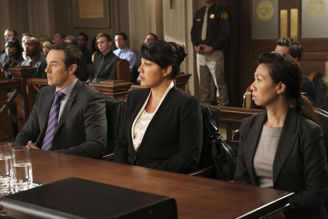 Wegen eines Behandlungsfehlers steht Callie (Sara Ramirez, M.) vor Gericht. Ihr Anwalt (Currie Graham, l.) versucht alles, um sie glimpflich davonko... - Bildquelle: ABC Studios