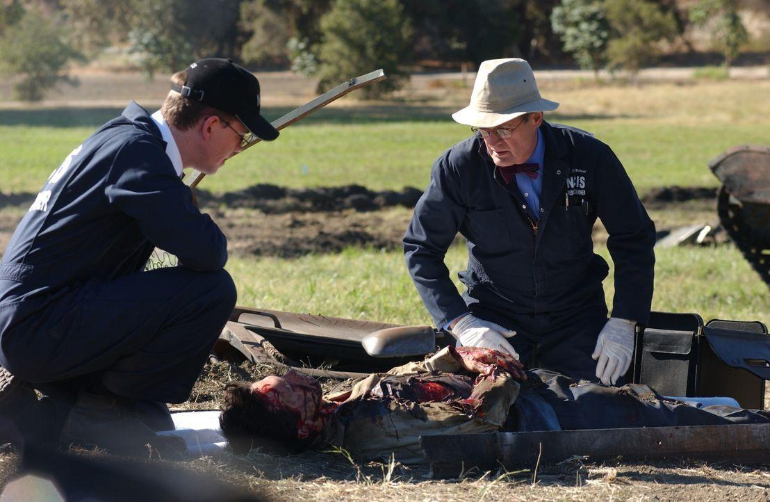 Bei der Untersuchung der Leichen, müssen Jimmy (Brian Dietzen, l.) und Ducky (David McCallum, r.) feststellen, dass der Tote Victor Gera (Michael G... - Bildquelle: CBS Television