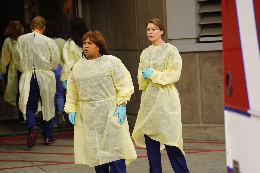 Können nicht fassen, was geschehen ist: Meredith (Ellen Pompeo, r.) und Miranda (Chandra Wilson, l.) ... - Bildquelle: ABC Studios