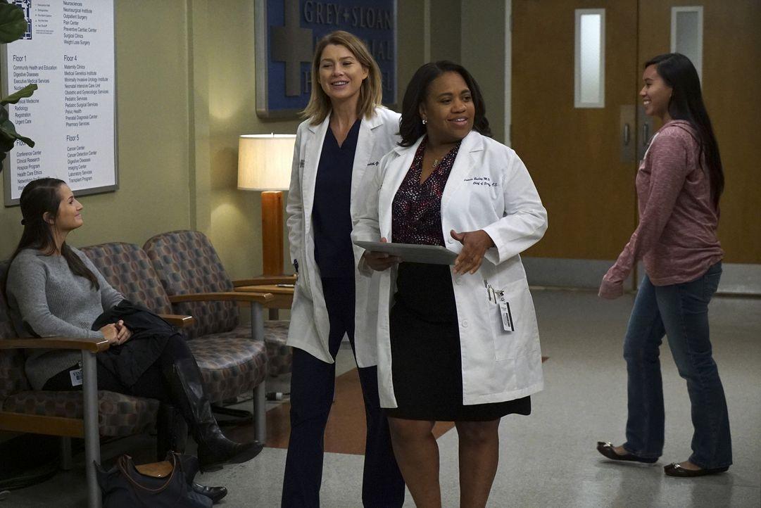 Müssen ganz besondere Situationen meistern: Meredith (Ellen Pompeo, l.) und Bailey (Chandra Wilson, r.) ... - Bildquelle: ABC Studios