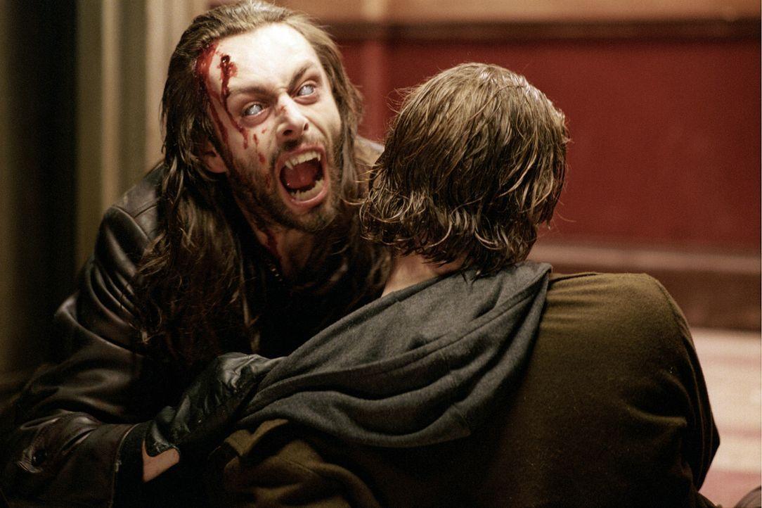 Attacke! Werwolf-Bandenchef Lucian (Michael Sheen, l.) hat keineswegs nur unlautere Motive im Sinn, während er an Michael (Scott Speedman, r.) nagt... - Bildquelle: TMG