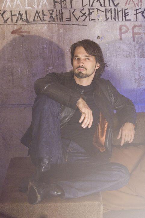 Bei Tag Mensch, in der Nacht ein Werwolf: Der charismatische Gabriel (Oliver Martinez) führt eines der letzten Werwolfrudel an ... - Bildquelle: 2007 Kinowelt GmbH