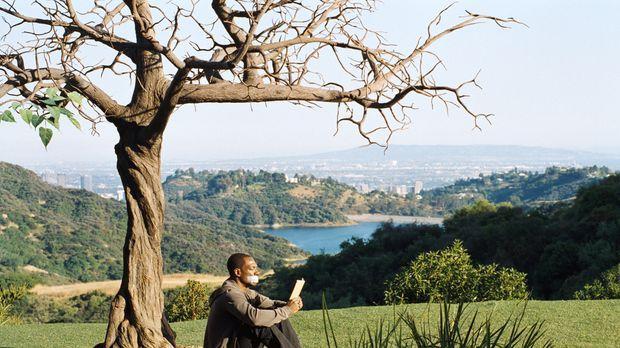 Seine letzte Überlebenschance: Sollte der magische Baum in seinem Garten alle...