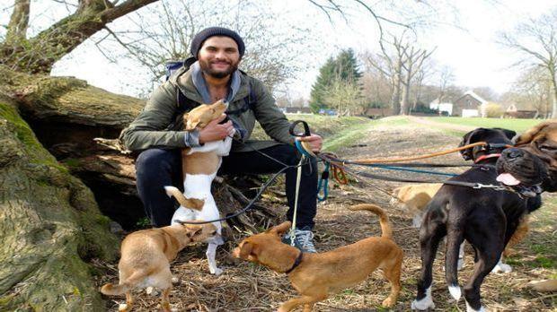 Masih Samin - Training mit Hunden