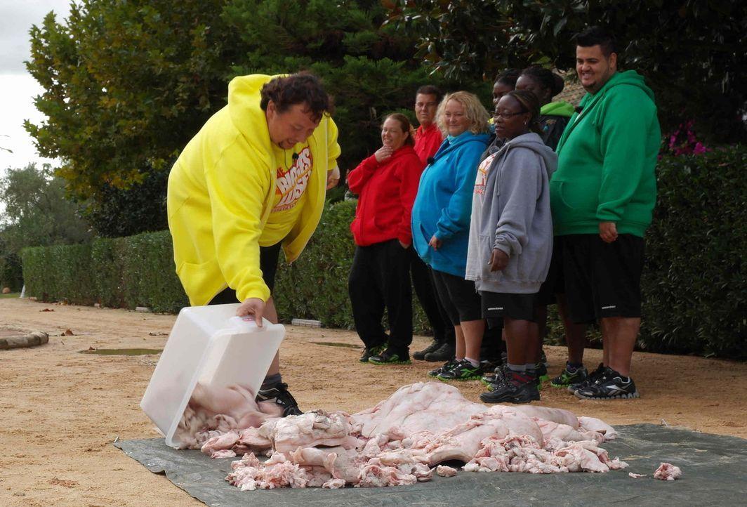 Um den Kandidaten vor Augen zu zeigen, wie viele überflüssige Kilos sie mit sich herumschleppen, müssen sie ihr Übergewicht in Form eines Fettbe... - Bildquelle: SAT.1
